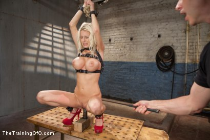 Photo number 9 from The Training of a Big Tit, Bleach Blonde Porn Star, Day One shot for The Training Of O on Kink.com. Featuring Riley Evans in hardcore BDSM & Fetish porn.