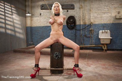 Photo number 4 from The Training of a Big Tit, Bleach Blonde Porn Star, Day One shot for The Training Of O on Kink.com. Featuring Riley Evans in hardcore BDSM & Fetish porn.
