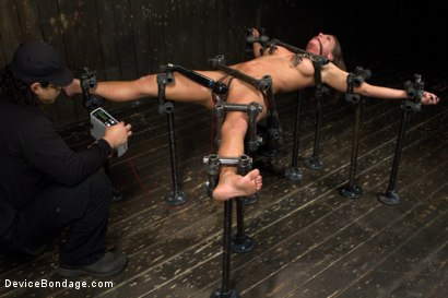Photo number 6 from Beauty and the Beast shot for Device Bondage on Kink.com. Featuring Ariel X and Orlando in hardcore BDSM & Fetish porn.