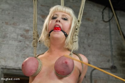 Photo number 8 from Hogtied Mangles Cherry Torn shot for Hogtied on Kink.com. Featuring Cherry Torn in hardcore BDSM & Fetish porn.