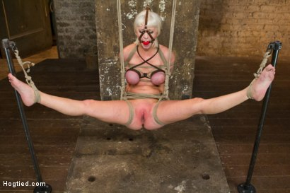 Photo number 11 from Hogtied Mangles Cherry Torn shot for Hogtied on Kink.com. Featuring Cherry Torn in hardcore BDSM & Fetish porn.