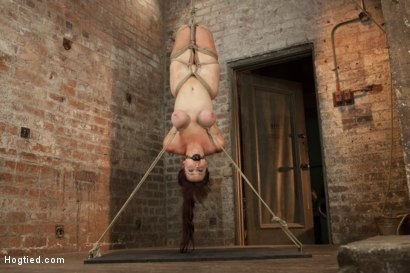 Photo number 6 from Bella Rossi Back For More! shot for Hogtied on Kink.com. Featuring Bella Rossi in hardcore BDSM & Fetish porn.