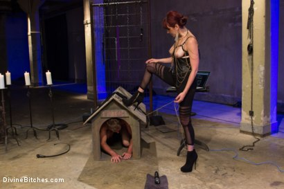 Photo number 15 from Click, Pay, Stroke! shot for Divine Bitches on Kink.com. Featuring Maitresse Madeline Marlowe  and John Jammen in hardcore BDSM & Fetish porn.