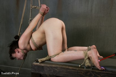 Photo number 2 from This is Suffering - Edited Live Show shot for Sadistic Rope on Kink.com. Featuring Elizabeth Thorn in hardcore BDSM & Fetish porn.
