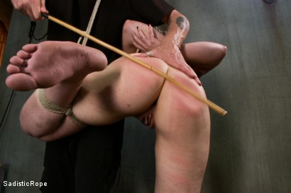 Photo number 6 from This is Suffering - Edited Live Show shot for Sadistic Rope on Kink.com. Featuring Elizabeth Thorn in hardcore BDSM & Fetish porn.