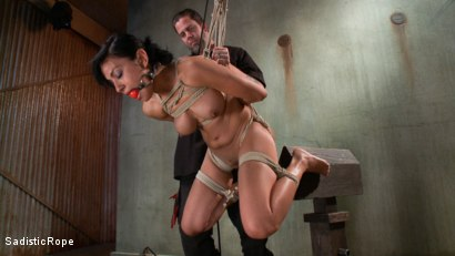 Photo number 7 from Pussy Punishment shot for Sadistic Rope on Kink.com. Featuring Beretta James in hardcore BDSM & Fetish porn.