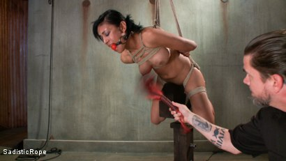 Photo number 8 from Pussy Punishment shot for Sadistic Rope on Kink.com. Featuring Beretta James in hardcore BDSM & Fetish porn.