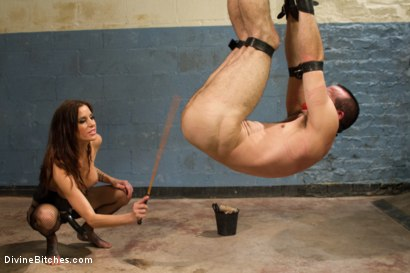 Photo number 8 from Sex and Cruelty shot for Divine Bitches on Kink.com. Featuring Gia DiMarco and Jason Miller in hardcore BDSM & Fetish porn.
