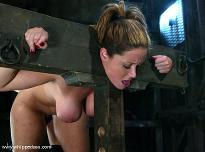 Photo number 12 from shy love and Christina Carter shot for Whipped Ass on Kink.com. Featuring Christina Carter and shy love in hardcore BDSM & Fetish porn.