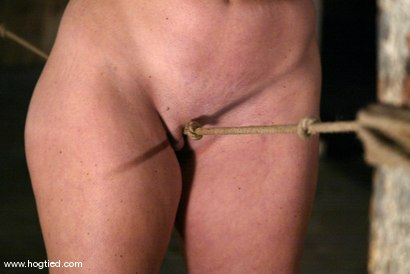 Photo number 5 from Christina Carter shot for Hogtied on Kink.com. Featuring Christina Carter in hardcore BDSM & Fetish porn.