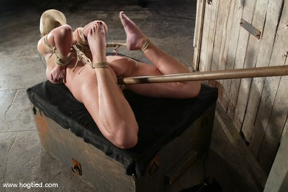 Photo number 12 from Christina Carter shot for Hogtied on Kink.com. Featuring Christina Carter in hardcore BDSM & Fetish porn.