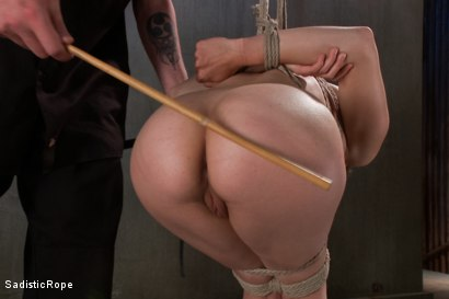 Photo number 11 from Screams of Agony shot for Sadistic Rope on Kink.com. Featuring Bonnie Day in hardcore BDSM & Fetish porn.