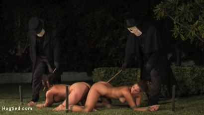 Photo number 5 from CABO - DAY OF THE DEAD - Part 1 shot for Hogtied on Kink.com. Featuring Dana DeArmond, Lola, Dee Williams, Christina Carter and Lew Rubens in hardcore BDSM & Fetish porn.