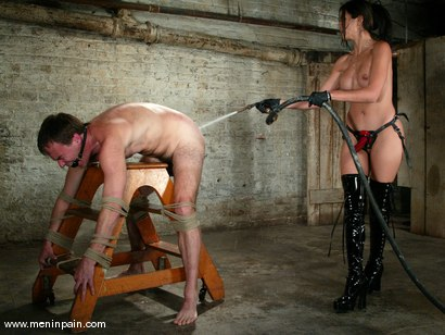 Photo number 12 from shy love and Wild Bill shot for Men In Pain on Kink.com. Featuring shy love and Wild Bill in hardcore BDSM & Fetish porn.