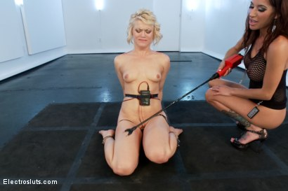 Photo number 11 from Ash Hollywood Squirted on and Cattleprodded! shot for Electro Sluts on Kink.com. Featuring Gia DiMarco and Ash Hollywood in hardcore BDSM & Fetish porn.