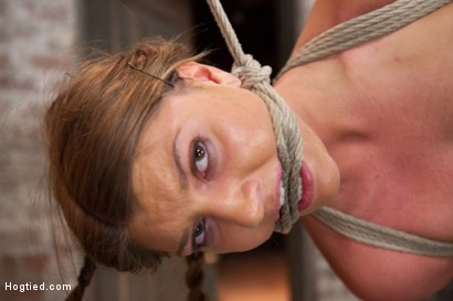 Photo number 13 from Beautiful Cassandra Nix Bound and Humiliated shot for Hogtied on Kink.com. Featuring Cassandra Nix in hardcore BDSM & Fetish porn.