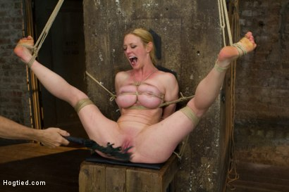 Photo number 11 from Gorgeous Squirting Orgasmic Rope Slut Gets Bound and Defiled shot for Hogtied on Kink.com. Featuring Dee Williams in hardcore BDSM & Fetish porn.