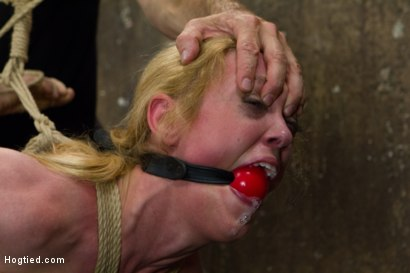 Photo number 7 from Gorgeous Squirting Orgasmic Rope Slut Gets Bound and Defiled shot for Hogtied on Kink.com. Featuring Dee Williams in hardcore BDSM & Fetish porn.