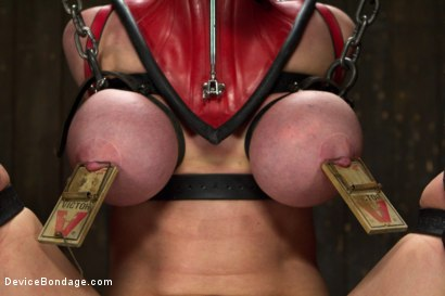 Photo number 7 from The Return of Darling shot for Device Bondage on Kink.com. Featuring Dee Williams in hardcore BDSM & Fetish porn.