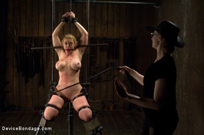 Photo number 10 from The Return of Darling shot for Device Bondage on Kink.com. Featuring Dee Williams in hardcore BDSM & Fetish porn.