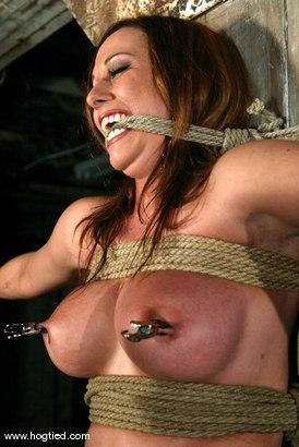 Photo number 5 from Sasha Sparks shot for Hogtied on Kink.com. Featuring Sasha Sparks in hardcore BDSM & Fetish porn.
