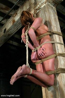 Photo number 10 from Sasha Sparks shot for Hogtied on Kink.com. Featuring Sasha Sparks in hardcore BDSM & Fetish porn.