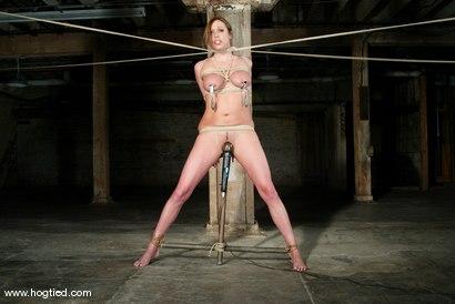 Photo number 14 from Sasha Sparks shot for Hogtied on Kink.com. Featuring Sasha Sparks in hardcore BDSM & Fetish porn.
