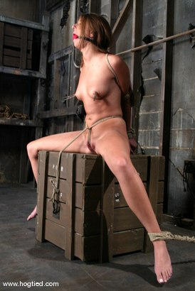 Photo number 3 from Veronica Stone shot for Hogtied on Kink.com. Featuring Veronica Stone in hardcore BDSM & Fetish porn.