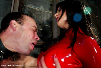 Photo number 10 from Mistress Aradia and Pussybottomboy shot for Men In Pain on Kink.com. Featuring Mistress Aradia and Pussybottomboy in hardcore BDSM & Fetish porn.