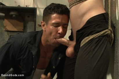 Photo number 5 from One of BIP doms is at the mercy of a horny handyman shot for Bound Gods on Kink.com. Featuring Trenton Ducati and Branden Forrest in hardcore BDSM & Fetish porn.