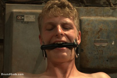 Photo number 9 from One of BIP doms is at the mercy of a horny handyman shot for Bound Gods on Kink.com. Featuring Trenton Ducati and Branden Forrest in hardcore BDSM & Fetish porn.