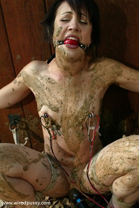 Photo number 2 from Dylan Ryan shot for Wired Pussy on Kink.com. Featuring Dylan Ryan in hardcore BDSM & Fetish porn.