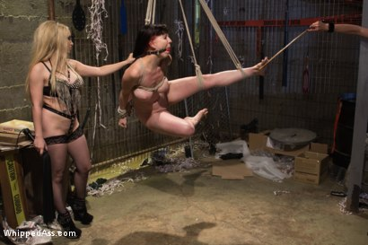 Photo number 6 from Sin City Lesbians shot for Whipped Ass on Kink.com. Featuring Lorelei Lee, Nerine Mechanique and Aiden Starr in hardcore BDSM & Fetish porn.