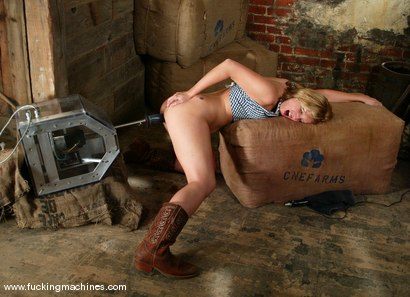 Photo number 4 from BONUS UPDATE shot for Fucking Machines on Kink.com. Featuring Jolene in hardcore BDSM & Fetish porn.