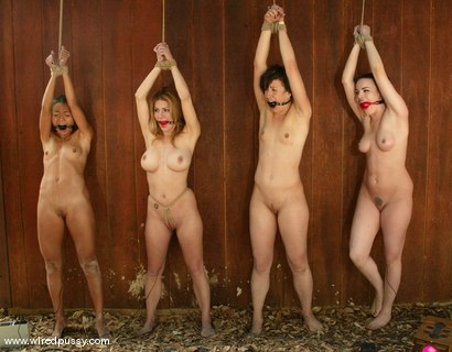 Dylan Ryan, Jenni Lee, Dana DeArmond, Keeani Lei and Princess Donna Dolore