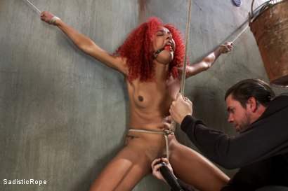 Photo number 10 from Newbie First Time in Brutal Rope Bondage!! shot for Sadistic Rope on Kink.com. Featuring Daisy Ducati in hardcore BDSM & Fetish porn.