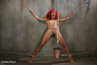 Photo number 9 from Newbie First Time in Brutal Rope Bondage!! shot for Sadistic Rope on Kink.com. Featuring Daisy Ducati in hardcore BDSM & Fetish porn.