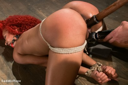 Photo number 13 from Newbie First Time in Brutal Rope Bondage!! shot for Sadistic Rope on Kink.com. Featuring Daisy Ducati in hardcore BDSM & Fetish porn.