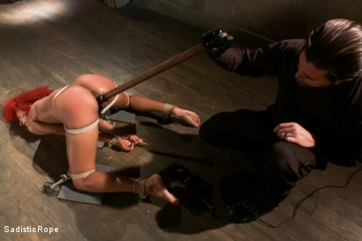 Photo number 15 from Newbie First Time in Brutal Rope Bondage!! shot for Sadistic Rope on Kink.com. Featuring Daisy Ducati in hardcore BDSM & Fetish porn.