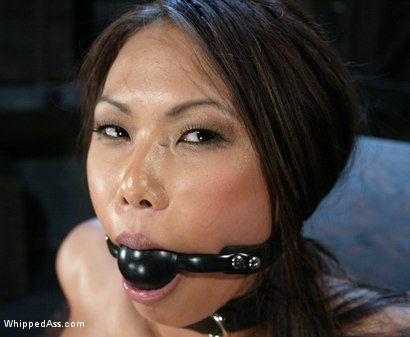 Photo number 7 from Veronica Lynn and Sandra Romain shot for Whipped Ass on Kink.com. Featuring Veronica Lynn and Sandra Romain in hardcore BDSM & Fetish porn.