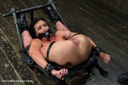 Photo number 1 from Claire Adams vs Rough Rider Wenona shot for Device Bondage on Kink.com. Featuring Wenona in hardcore BDSM & Fetish porn.