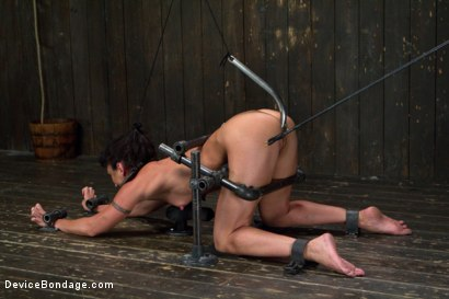 Photo number 7 from Claire Adams vs Rough Rider Wenona shot for Device Bondage on Kink.com. Featuring Wenona in hardcore BDSM & Fetish porn.
