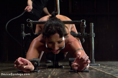 Photo number 9 from Claire Adams vs Rough Rider Wenona shot for Device Bondage on Kink.com. Featuring Wenona in hardcore BDSM & Fetish porn.