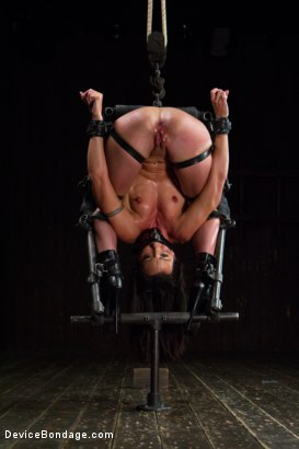 Photo number 4 from Claire Adams vs Rough Rider Wenona shot for Device Bondage on Kink.com. Featuring Wenona in hardcore BDSM & Fetish porn.