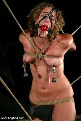 Photo number 12 from CABO<br>DAY OF THE DEAD part 2<BR>A fantasy. shot for Hogtied on Kink.com. Featuring Dana DeArmond, Lola, Dee Williams, Christina Carter and Lew Rubens in hardcore BDSM & Fetish porn.