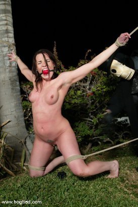 Photo number 4 from CABO<br>DAY OF THE DEAD part 3<BR>A fantasy. shot for Hogtied on Kink.com. Featuring Christina Carter, Dana DeArmond, Lola, Dee Williams and Lew Rubens in hardcore BDSM & Fetish porn.