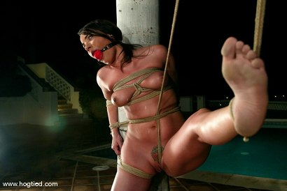 Photo number 8 from CABO<br>DAY OF THE DEAD part 5<BR>A fantasy. shot for Hogtied on Kink.com. Featuring Christina Carter, Dana DeArmond, Lola, Dee Williams and Lew Rubens in hardcore BDSM & Fetish porn.