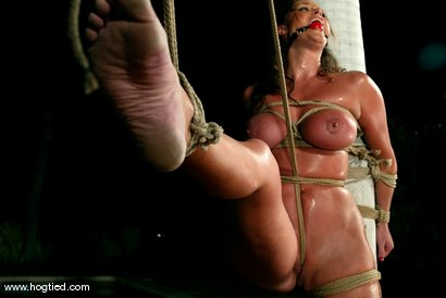 Photo number 9 from CABO<br>DAY OF THE DEAD part 5<BR>A fantasy. shot for Hogtied on Kink.com. Featuring Christina Carter, Dana DeArmond, Lola, Dee Williams and Lew Rubens in hardcore BDSM & Fetish porn.