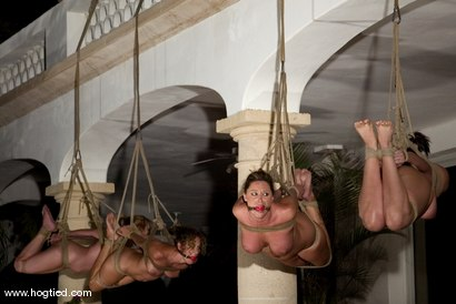 Photo number 4 from CABO<br>DAY OF THE DEAD part 6<BR>A fantasy. shot for Hogtied on Kink.com. Featuring Dee Williams, Dana DeArmond, Lola, Christina Carter and Lew Rubens in hardcore BDSM & Fetish porn.