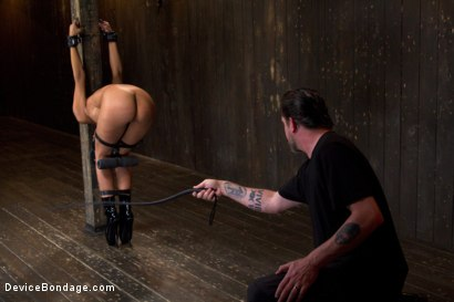 Photo number 5 from The Pope vs Beretta James shot for Device Bondage on Kink.com. Featuring Beretta James in hardcore BDSM & Fetish porn.